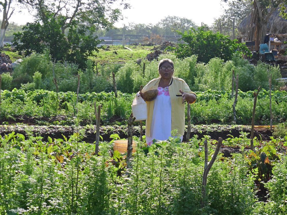 Rosi in Agrobiodiversity Garden.jpg