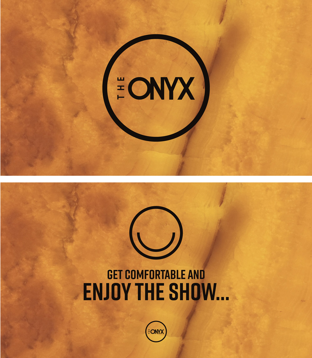 Onyx_Slides.jpg
