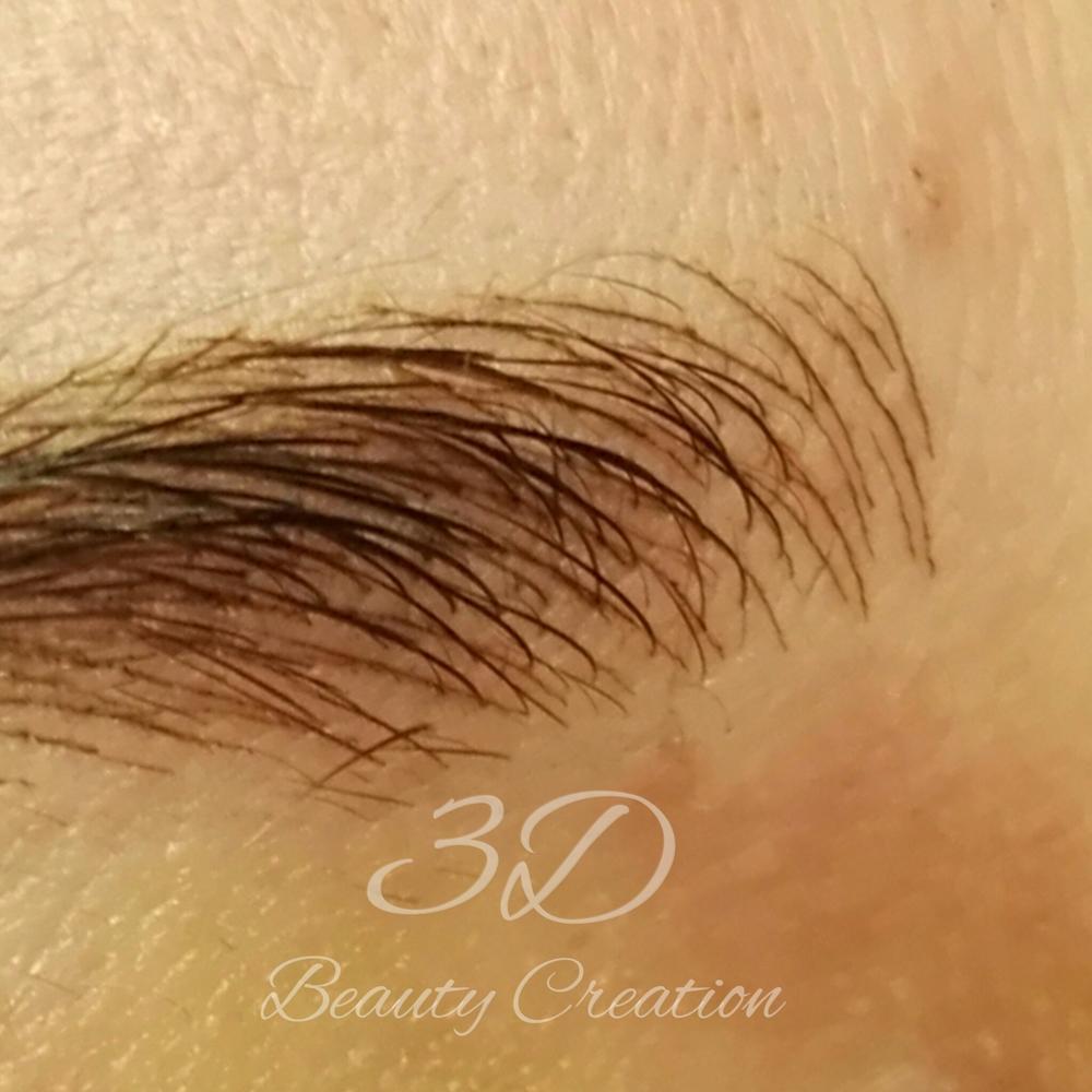 5da7e96f68-permanent makeup 3D bryn (5).jpg