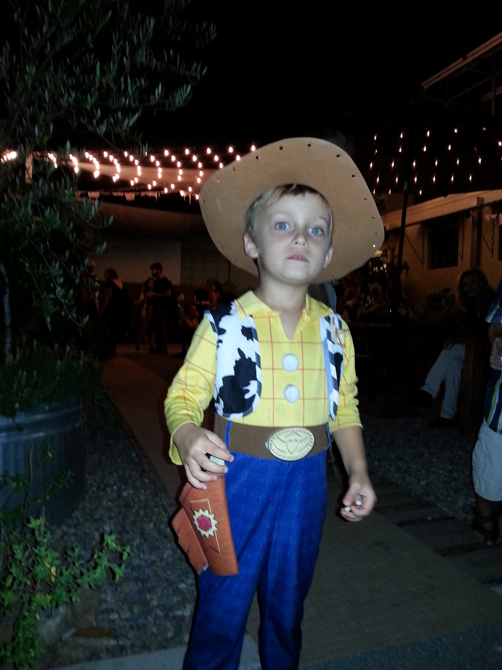 The Littlest Cowboy