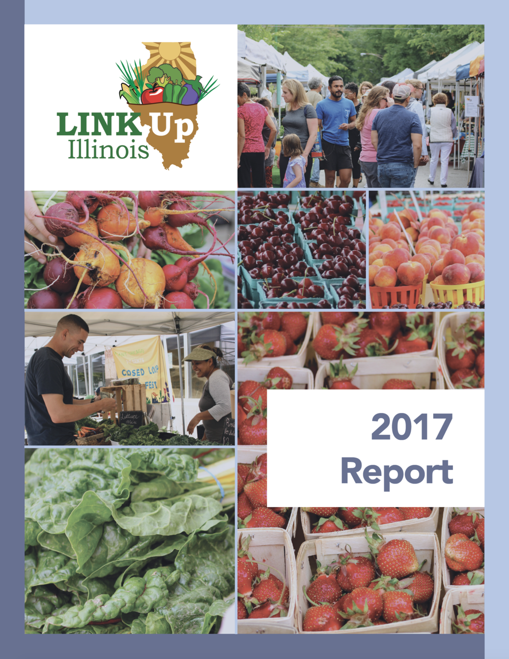 2017 Link Up Report.png