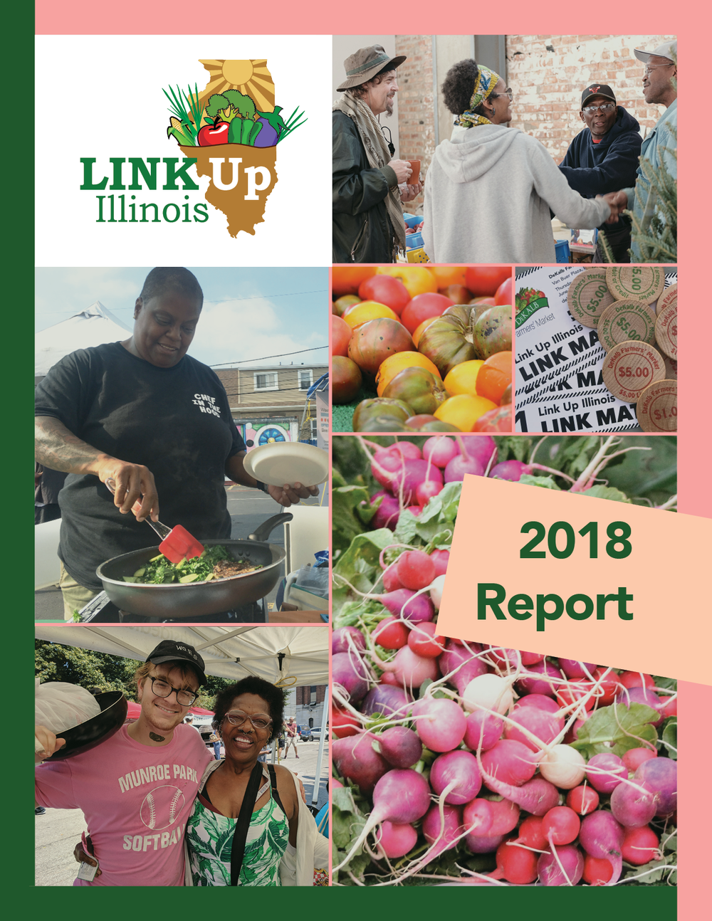 Link Up Report 2018 .png