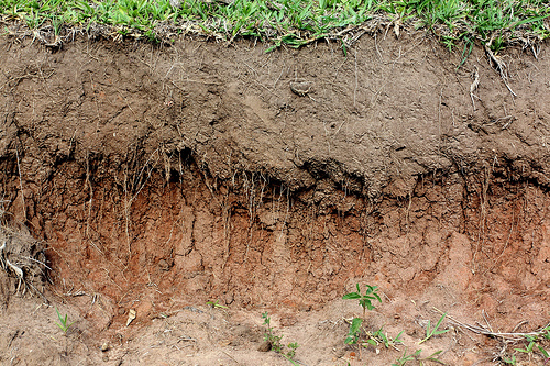 soil-layers.jpg