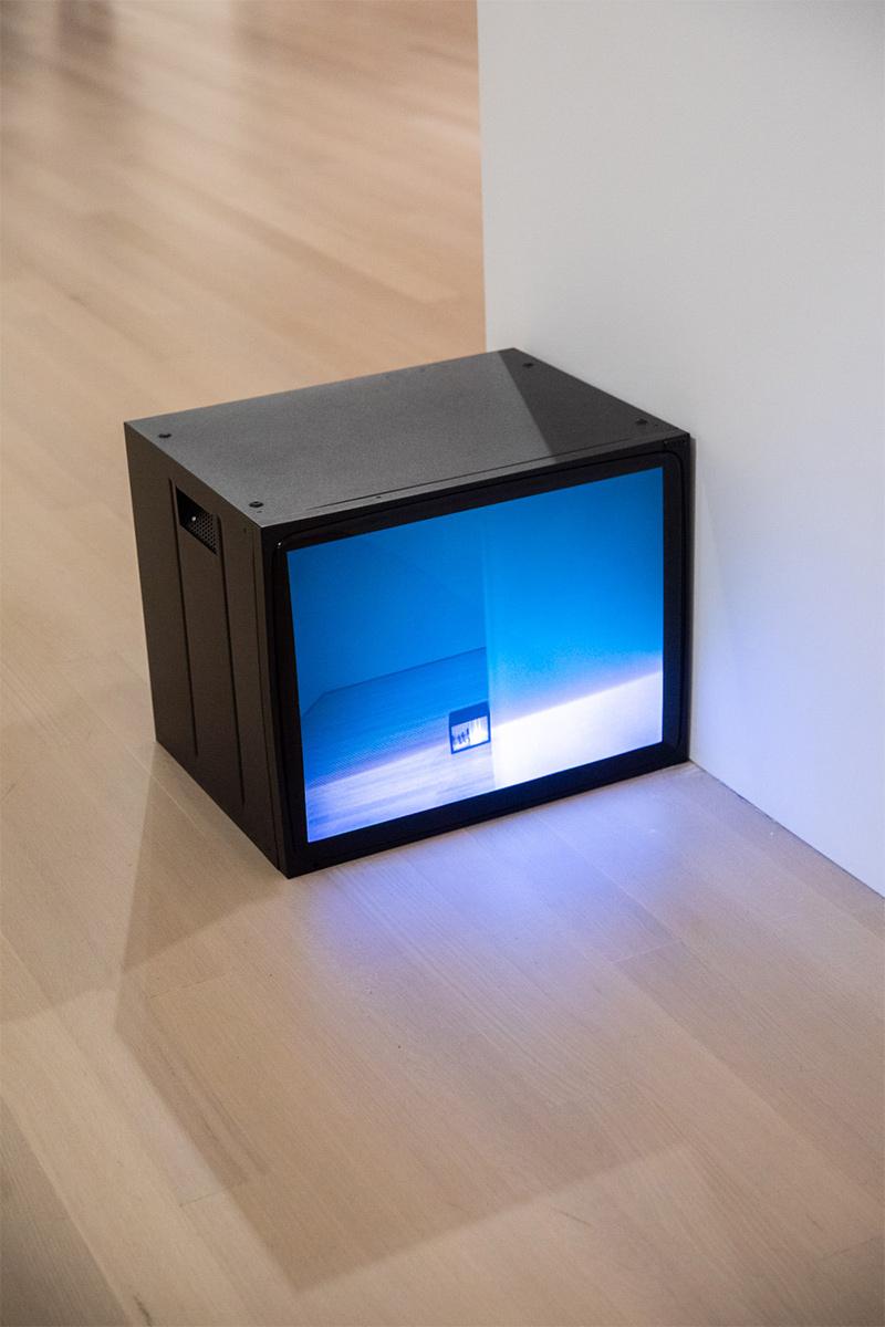 Bruce Nauman: Disappearing Acts at MoMA