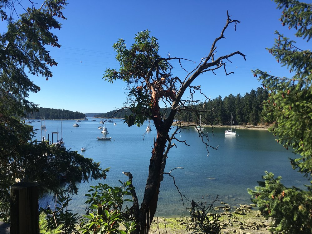 Montague Harbour, Galiano Island