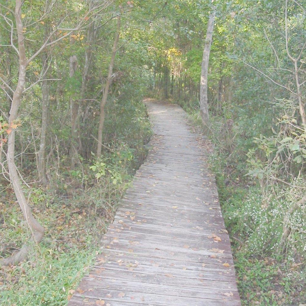 50mi, 50km  Feb 10, 2018 -     Huntsville State Park      Huntsville, TX