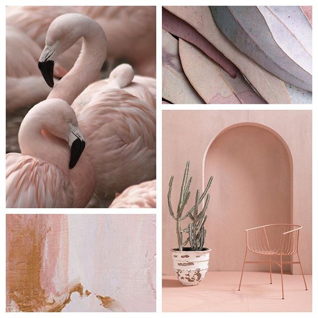 Pairing blush with clean lines and hints of burgundy and copper this #moodboardmonday keeps this feminine color from feeling too girly.  And I'm diggin' it. ✨