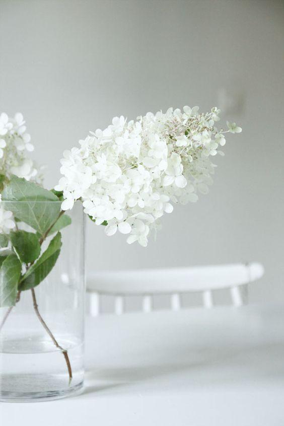 Lilacs State+Arrow.jpg