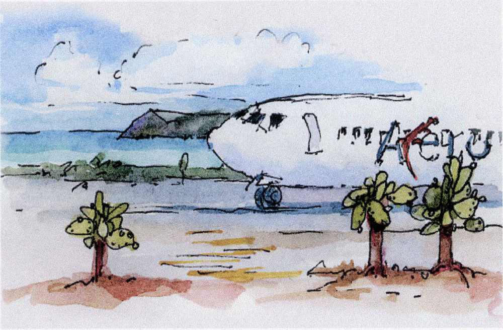Galapagos air strip