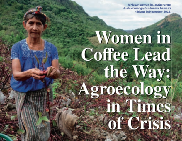 Read this  Tea and Coffee Trade Journal  article, by Anika Rice