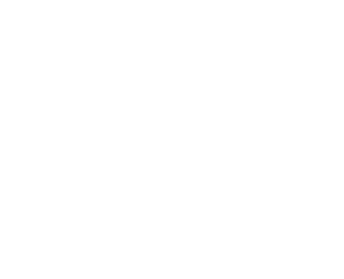 Fashion Law & Business