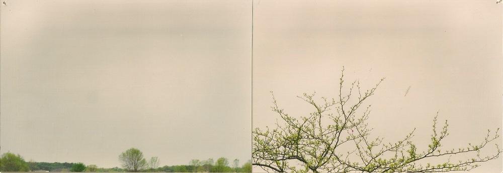 dual landscape2.jpeg