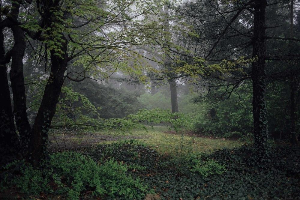 chattanooga-5.jpg