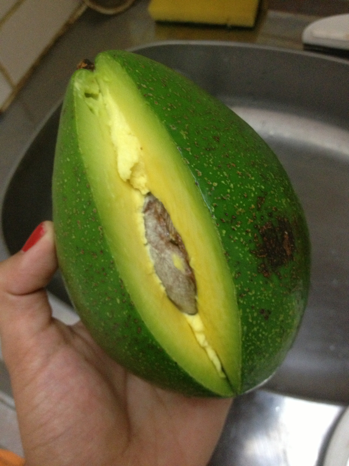 Avocado in Brazil.