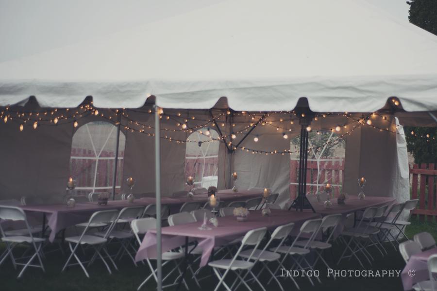 vintage-backyard-wedding-rockford-il-photographers