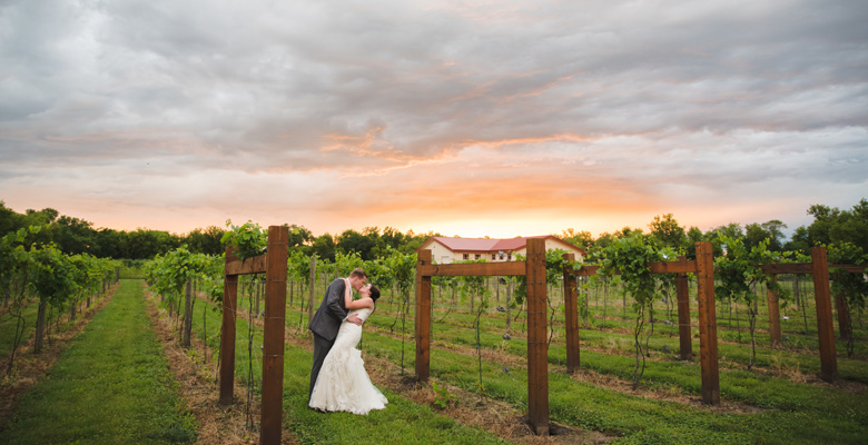 dc-estate-winery-weddings-beloit-wi.jpg