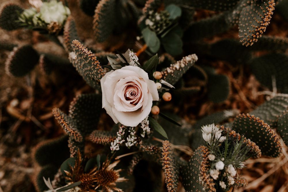 joshua-tree-elopement-wedding-photographers-1.jpg