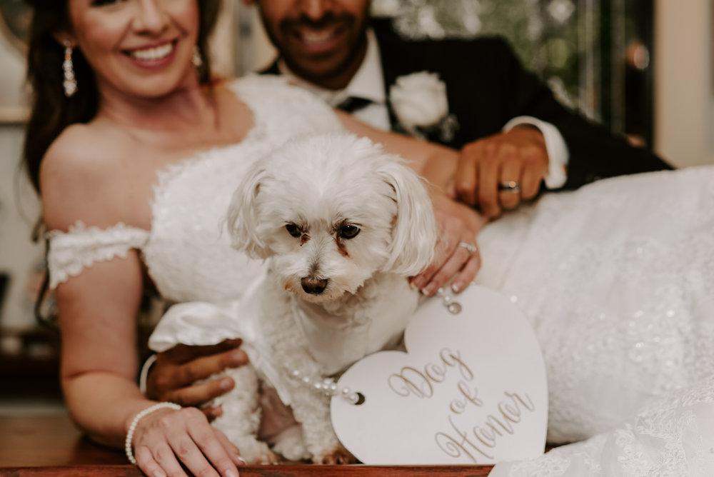 Rockford-IL-wedding-photographers-148.jpg