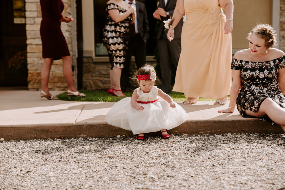 dc-winery-wedding-photos-beloit-wi-wedding-photographers-100.jpg