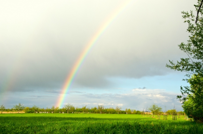 Sunny Skies and Rainbows Make The Heartland Happy