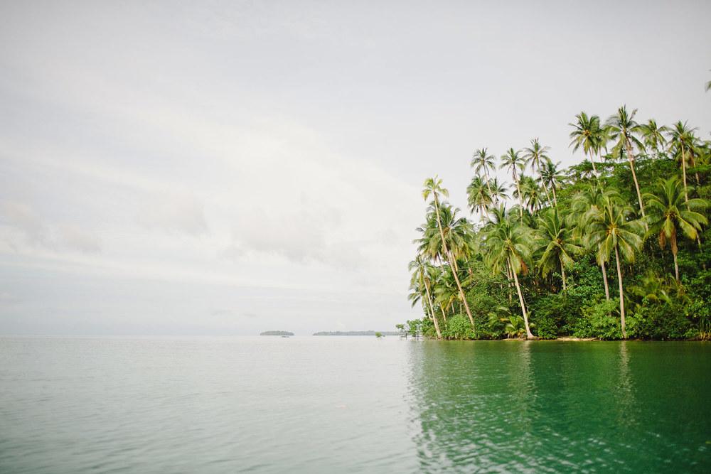 mangroves02.jpg
