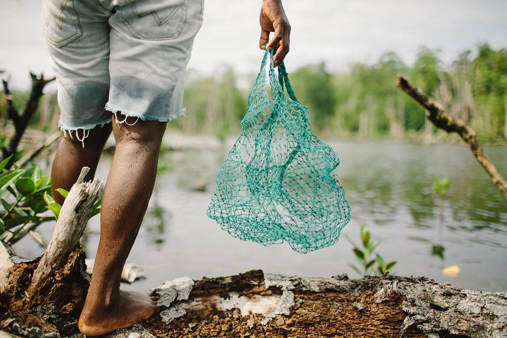 mangroves03.jpg