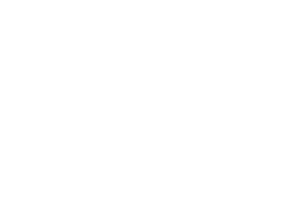 Laurels 2 OFFICIALSELECTION-LongBeachIndieInternationalFilmMediaandMusicFestival-2017 (1).png