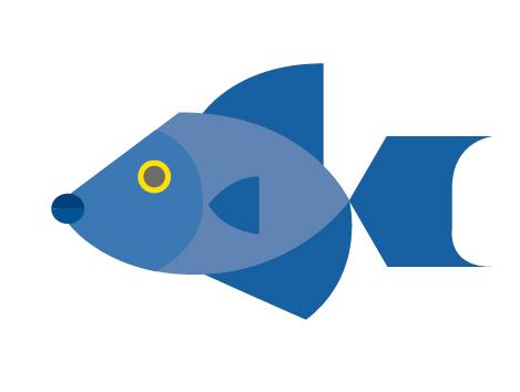 Ballesta fish