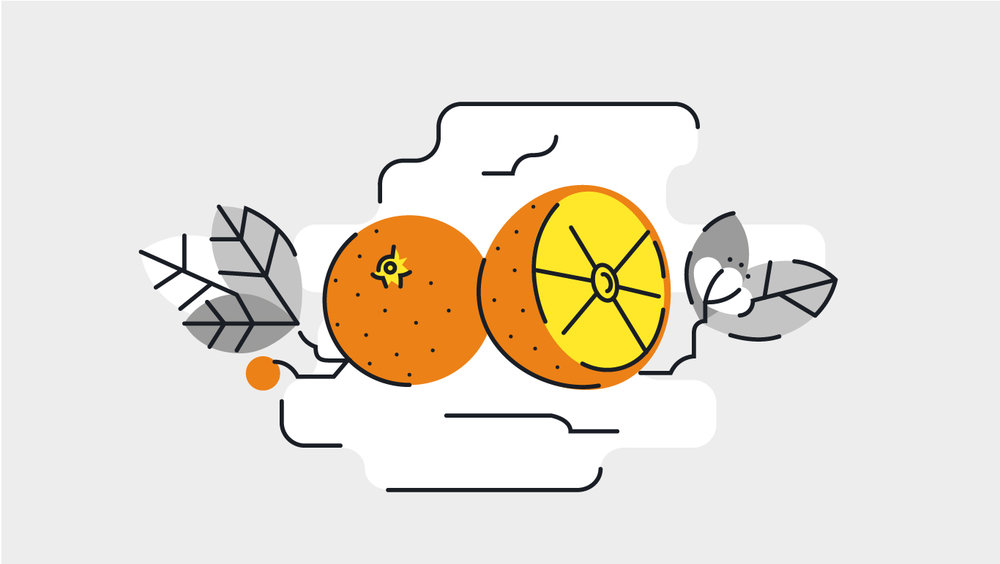 oranges-icon-valencia-fruit-custom
