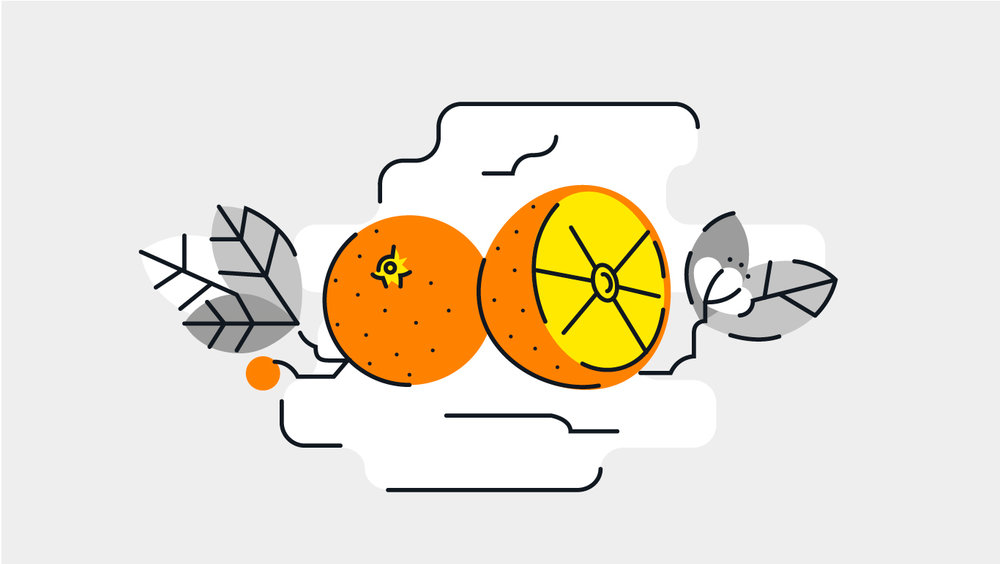 illustration, orange, naranja , valencia, illustrator, vector