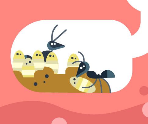 ants, bugs, nursery.jpg