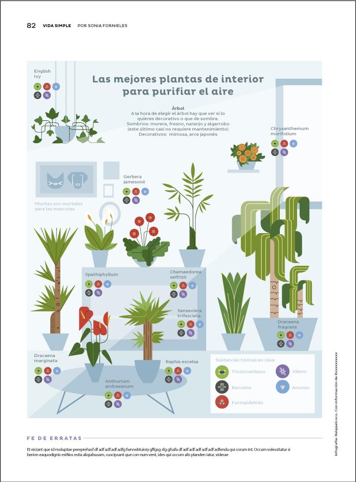 plants_magazine.jpg
