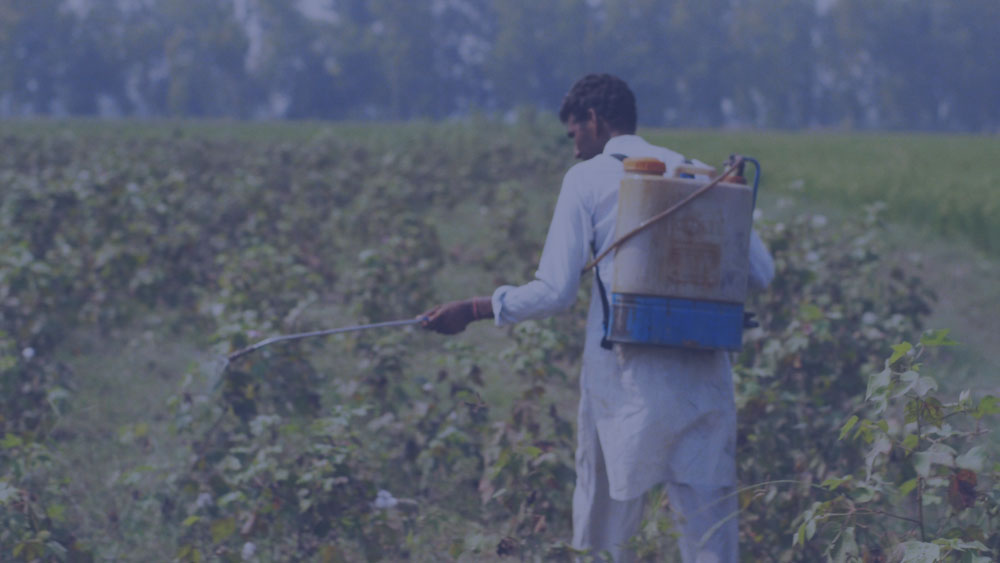 Fertilisers and pesticides