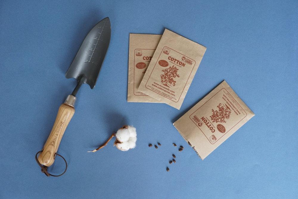 M Oppi Cotton diary seed.JPG