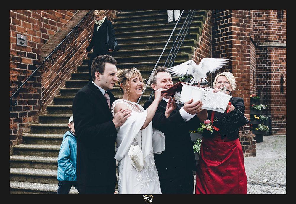 kreative Hochzeitsfotos Tauben