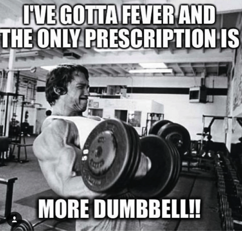 ive-gotta-fever-and-the-ony-prescription-is-more-dumbbell-10862069.png