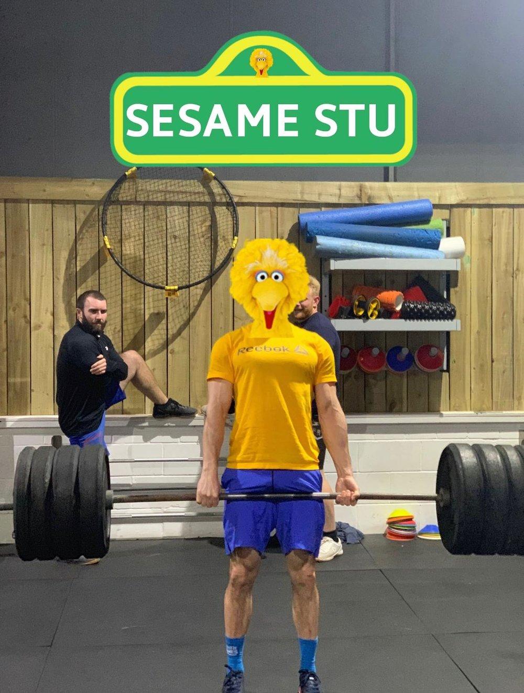 Sesame Stu.JPG