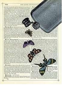 Newspaper Print Art Butterflies