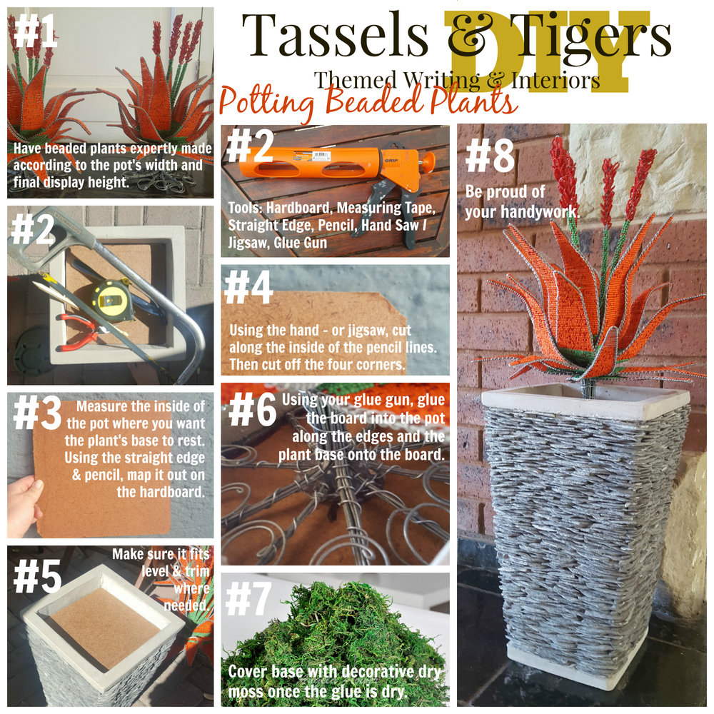 DIY adding beaded aloe plants to  concrete and cladding pots Proudly South African
