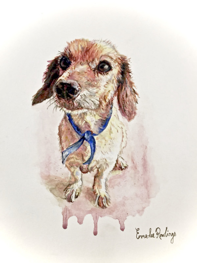 Sweet dog with blue ribbon in watercolour by Emma-Lee Rawlings