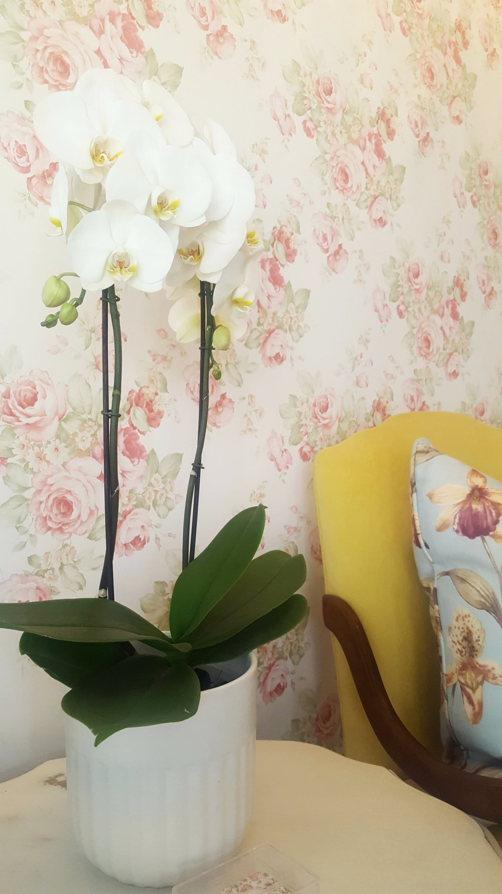 This bright, feminine hair salon in Johannesburg with floral theme.