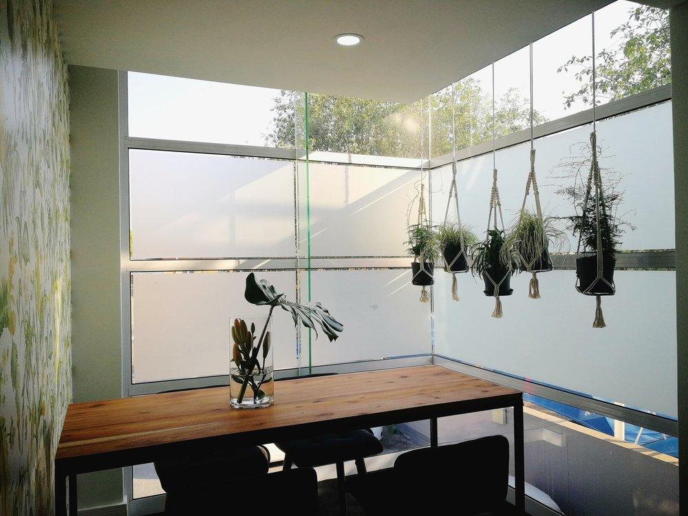 Beautiful hanging makrami plants in a corporate green room in Johannesburg, Gauteng.