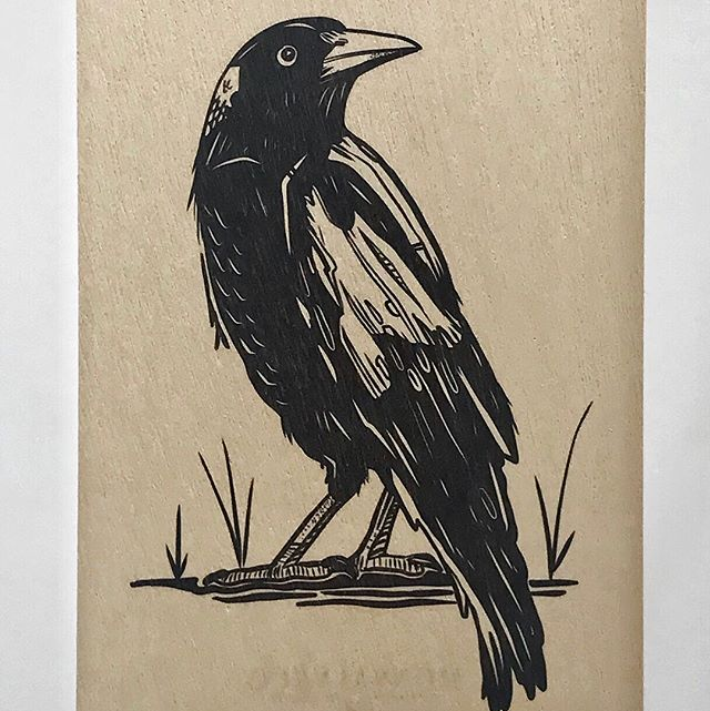 New original Monsalve birch wood cards are available on our Etsy site!  All cards have 20%off at the moment too! Get some Xmas card shopping done today! https://www.etsy.com/au/shop/MonsalvecoART #etsy #greetingcards #sydney #birdlife #birdstationary #handmadecards #buyonline #supportlocalbusiness #monsalveco #pocketsizedart #australianartist #birchwood #artonwood