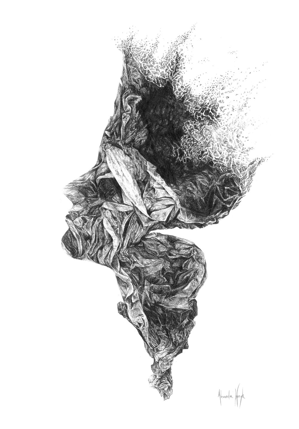 Crumpled Paper, 210 × 297mm, Pencil on Paper, 21-08-17