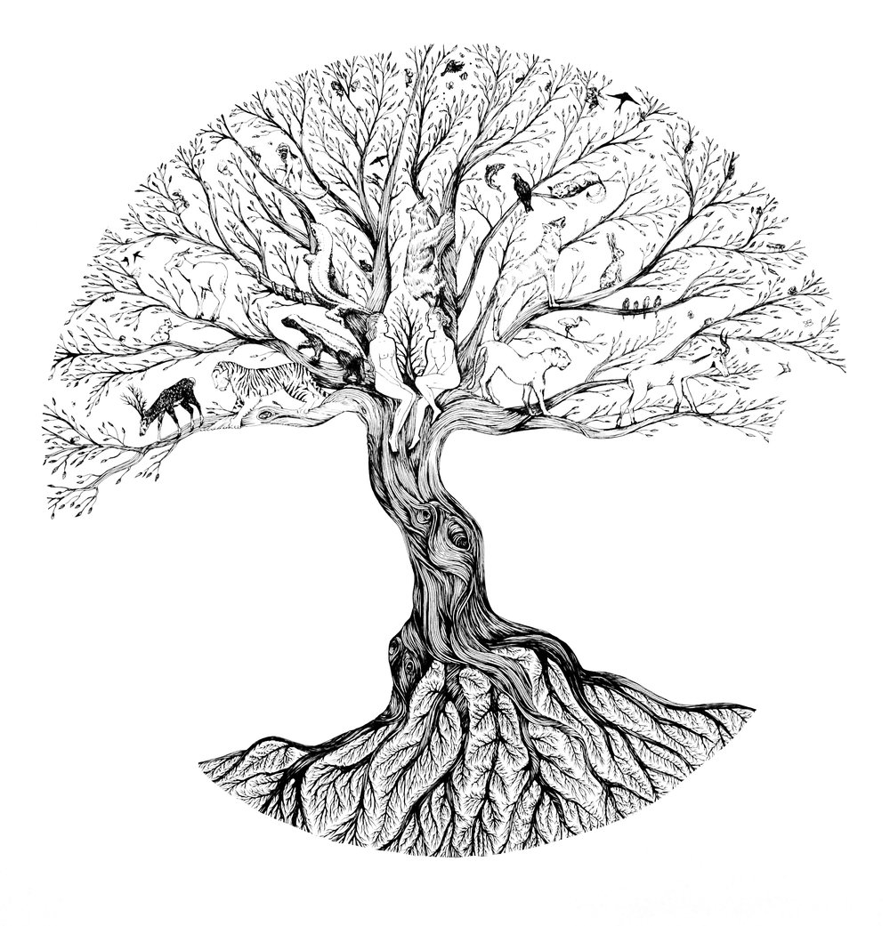 Tree of Life 500 x 500 mm, Pen
