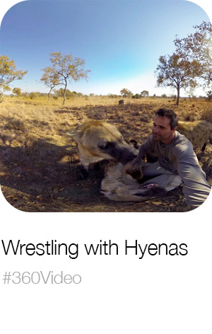 Wrestling with Hyenas