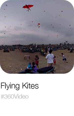 Flying Kites