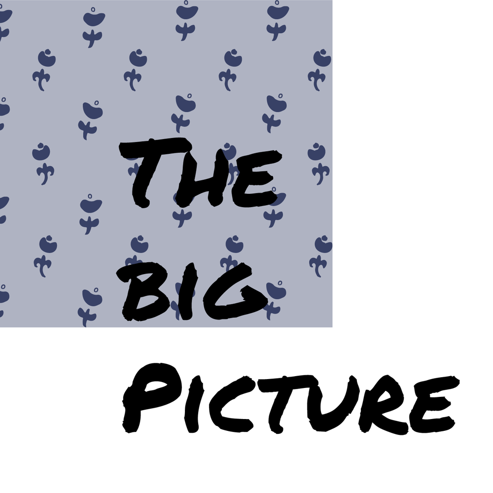 thebigpictureicon-01.png