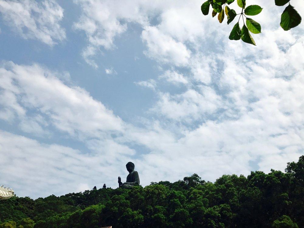 big buddha peaking out at us.