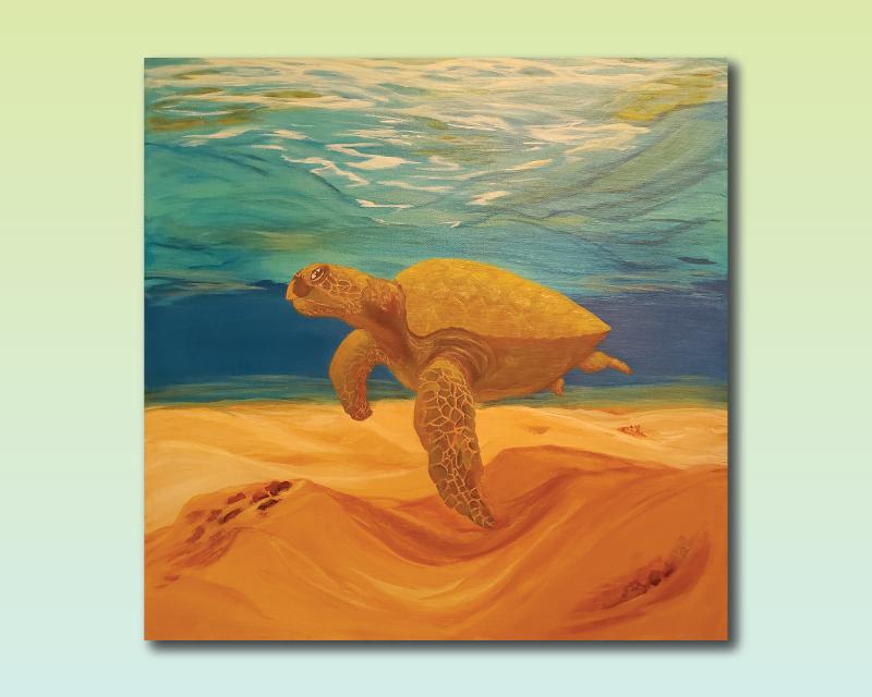 turtlehorizontal.png